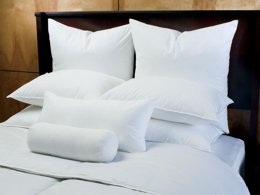 DOWNLITE Hotel Euro Pillow Sham Stuffer Polyester at Sears.com