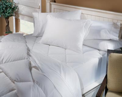 Shop DOWNLITE Twin XL College Back To School Bedding from twinxlbedding.com